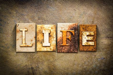 Best Pro Life Stock Photos, Pictures & Royalty-Free Images - iStock