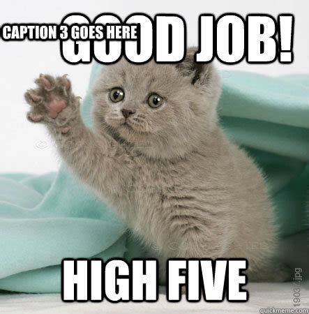 Good Meme Cat - good job high five caption 3 goes here high five cat quickmeme put a smile on your face