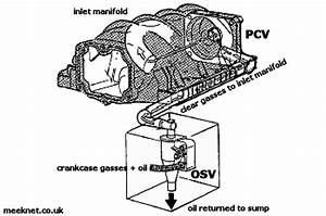 Can Anyone Give Me A Diagram Of The Ccv And Osv Direction