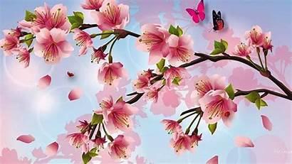 Cherry Blossoms Blossom Desktop Painting Pink Butterflies