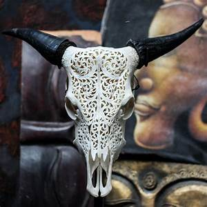 Real Hand Carved Cow Skull  U0026horns Taxidermy Buffalo