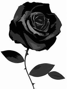 Image - 36274950-black-rose-images.png | Animal Jam Clans ...