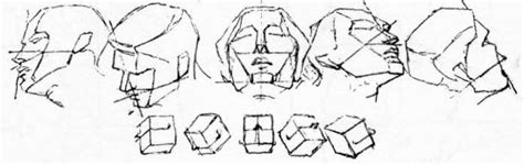 How To Draw The Head In Perspective Drawing Human Head