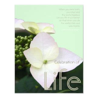 celebration  life  quote background personalized