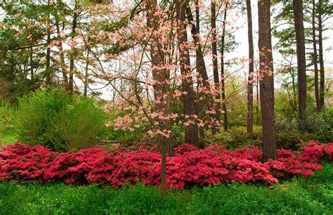Woodlands | Page | Duke Landscape Architects