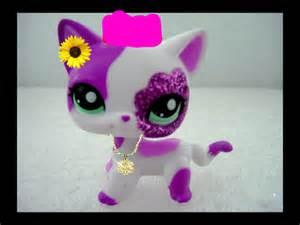 pet shop cats funky cat littlest pet shop fan 35402761 fanpop