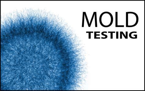 mold testing inspections home inspector  nashville