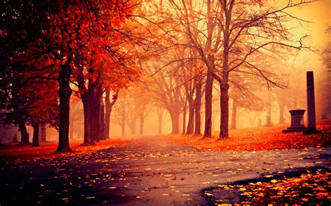 Fall Wallpaper For by Beautiful Fall Pictures Wallpaper 60 Images