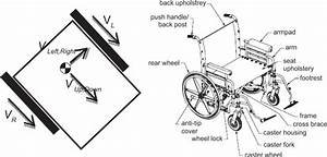 Velocity Vectors And The Schematic Description Of The