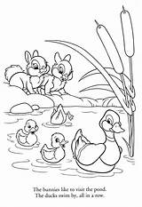 Pond Duck Drawing Coloring Ducks Pages Animals Getdrawings sketch template