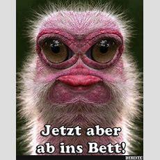 Ab Ins Bett Mit Dir Lustige Bilder Sprüche Witze Vitaroom Home
