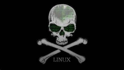 Linux Kali Hacker Wallpapers Security Wallpapersafari Experts