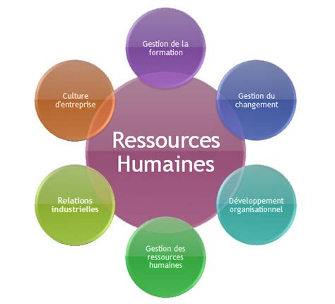 bureau des ressources humaines accueil ressources humaines guides de recherche 183 research guides at of ottawa