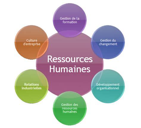 bureau des ressources humaines bureau des ressources humaines 28 images jm ucciani