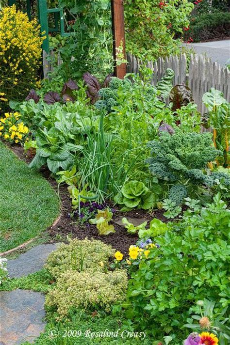 love thisbeautiful edible garden  blends