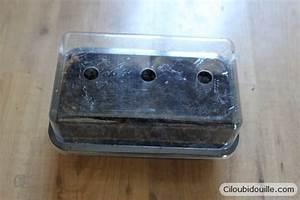 Cultiver Des Champignons De Paris Sans Kit : cultiver des champignons de paris ciloubidouille ~ Melissatoandfro.com Idées de Décoration