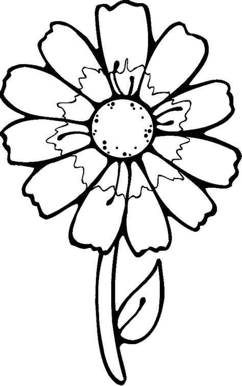 printable flower coloring pages coloring home