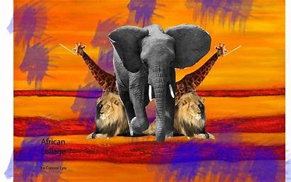 Collage African Multimedia1