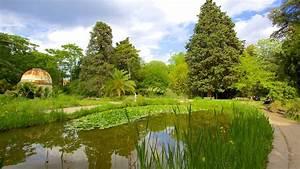 Jardin des plantes de montpellier in montpellier for Jardin montpellier