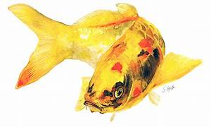 Yellow Koi Fish Painting by Stephanie Kriza