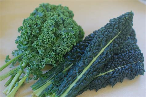 dino kale kale chips eat a bunch