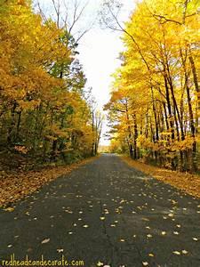 Michigan Fall Foliage - Redhead Can Decorate  Fall