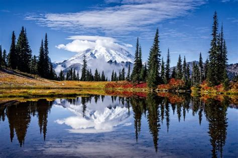 tipsoo park lake rainier washington national mount mt fall rainer ecran bing fonds iconic october lac wa autumn shines happen
