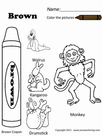 Worksheets Brown Colors Spanish Preschool Coloring Pages