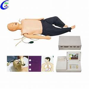 Medical Human Anatomy Skeleton Model Nursing Training