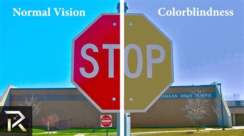 what colors do colorblind see 10 ways color blind see the world