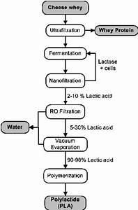 Flow Diagram For Lactic Acid Production And Separation From Cheese Whey