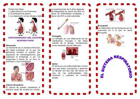 112863981 triptico sistema respiratorio