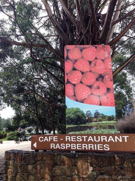 lake farm park christmas events hill raspberry farm cafe launceston
