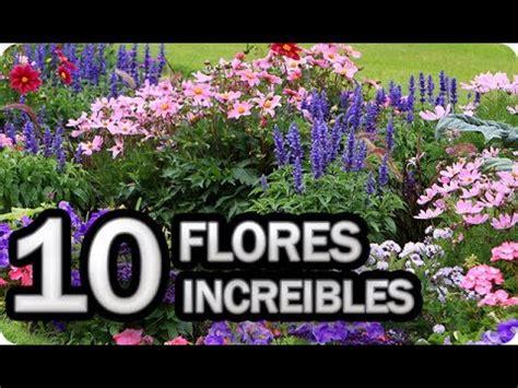 10 Flores Imprescindibles Para Poner En El Huerto O Jardin