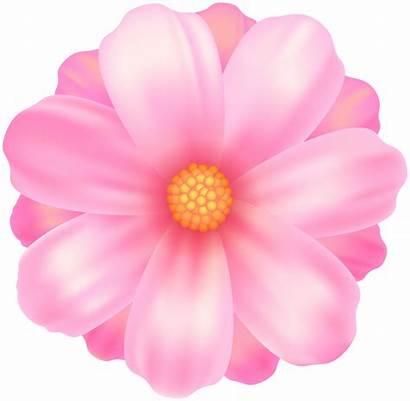 Transparent Flower Clipart Clip