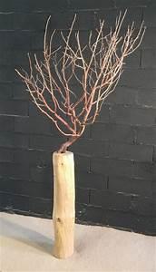 Tronc Bois Flotté : arbuste sur tronc en bois flott ~ Dallasstarsshop.com Idées de Décoration