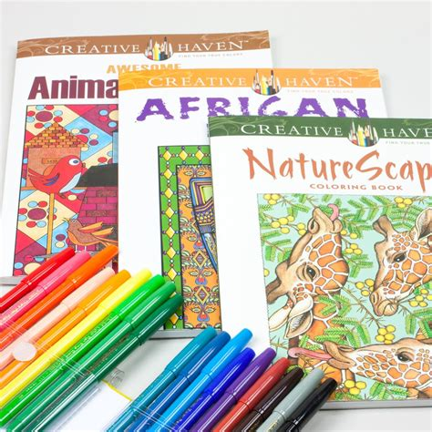 adult coloring book kit with pentel fine point color