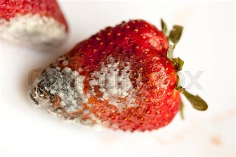 red ripe strawberries, moldy, spoiled strawberries close