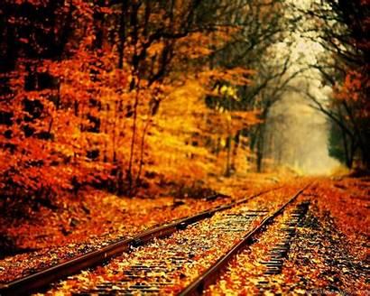 2560 1600 Definition Autumn Wallpapers Desktop Background