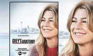 ABC releases Grey's Anatomy season 15 poster featuring a ...