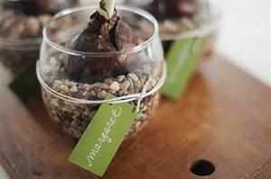 Planter Des Bulbes : planter et offrir de jolis bulbes j 39 ai dit oui ~ Dallasstarsshop.com Idées de Décoration