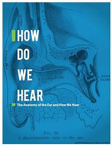 Healthy Hearing Offers Free Guide To Help Understand The