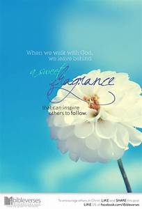 A Sweet Fragran... Sweet Aroma Quotes
