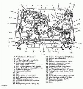 2001 Ford Mustang 3 8 L Firing Order