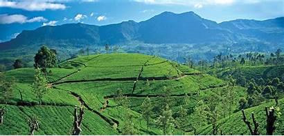 Lanka Sri Wallpapers