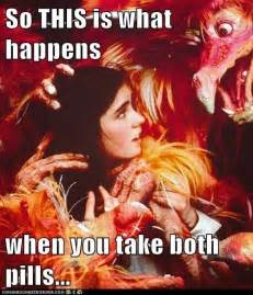 Labyrinth Meme - 17 best images about labyrinth on pinterest maze goblin king and labyrinths