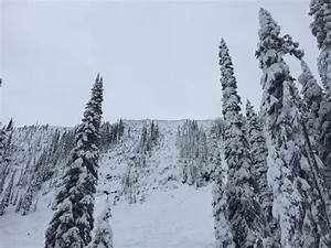 Red Mountain BC, Conditions Report: Stop 2 Powder highway ...