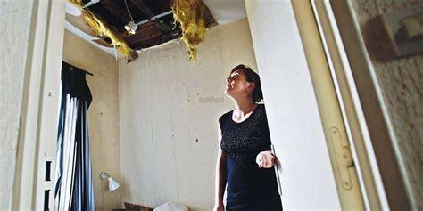 bordeaux des rats dans la maison une famille 224 la rue sud ouest fr