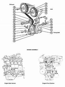 Fiat Timing Belt