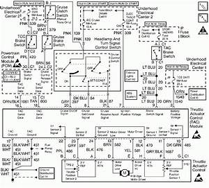 2001 Pontiac Firebird Gm Horn Relay Wiring Diagram